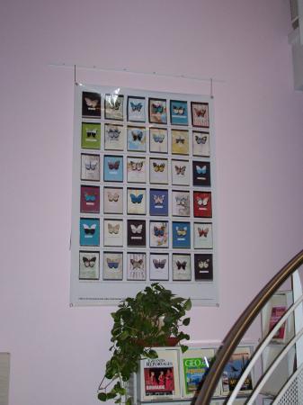 Un cabinet de curiosité, Bassens, octobre-novembre 2008